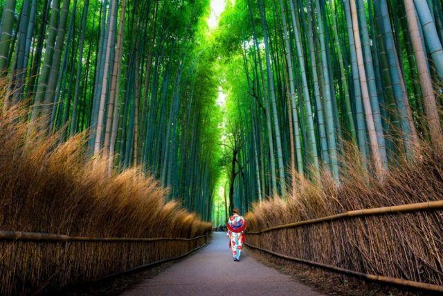 proverbios-japones-golden-palace-perú